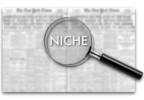 "Magnifying Glass hovering over text that says ""Niche"""