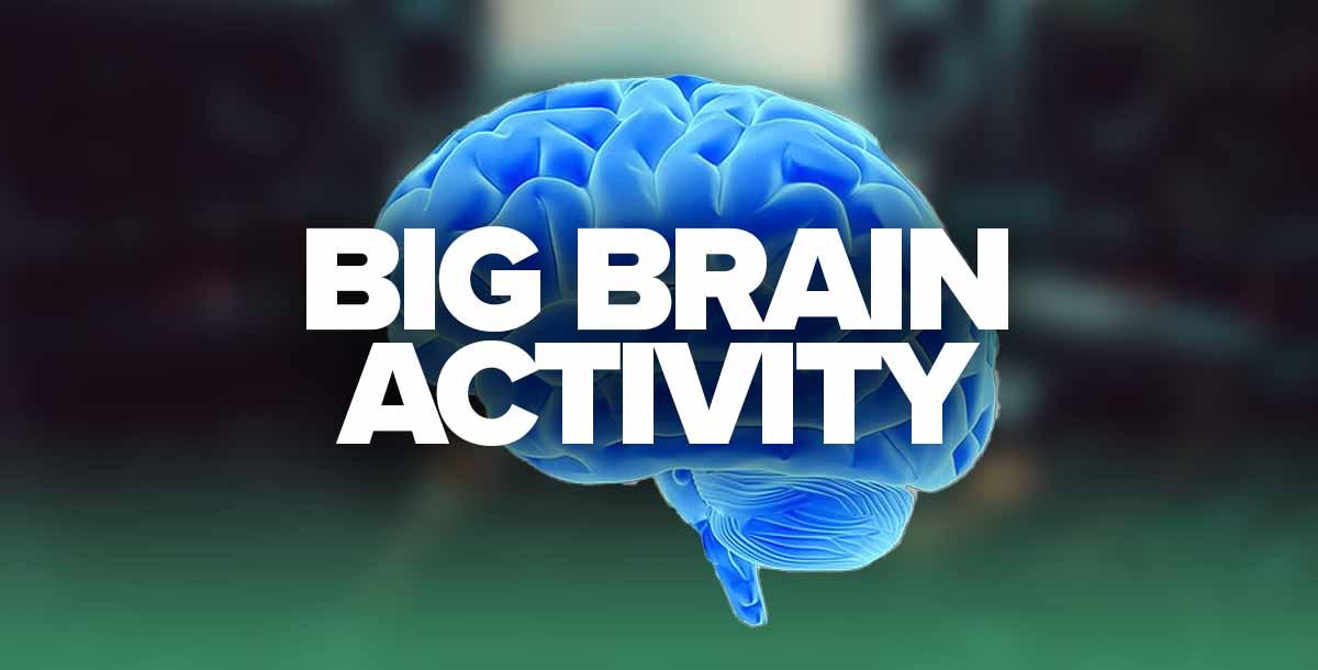 Big Brain Activity