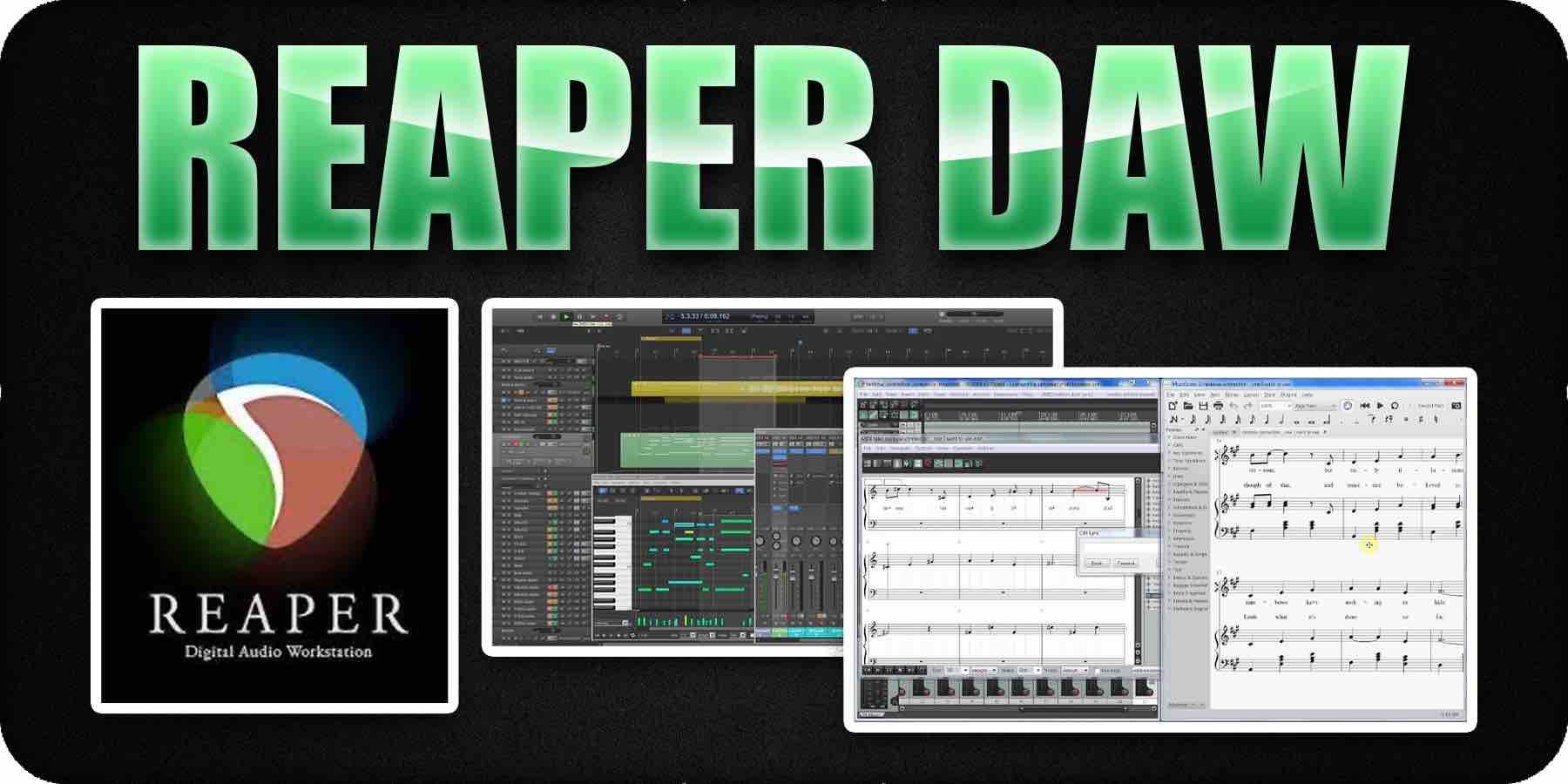 Reaper Daw music notation software